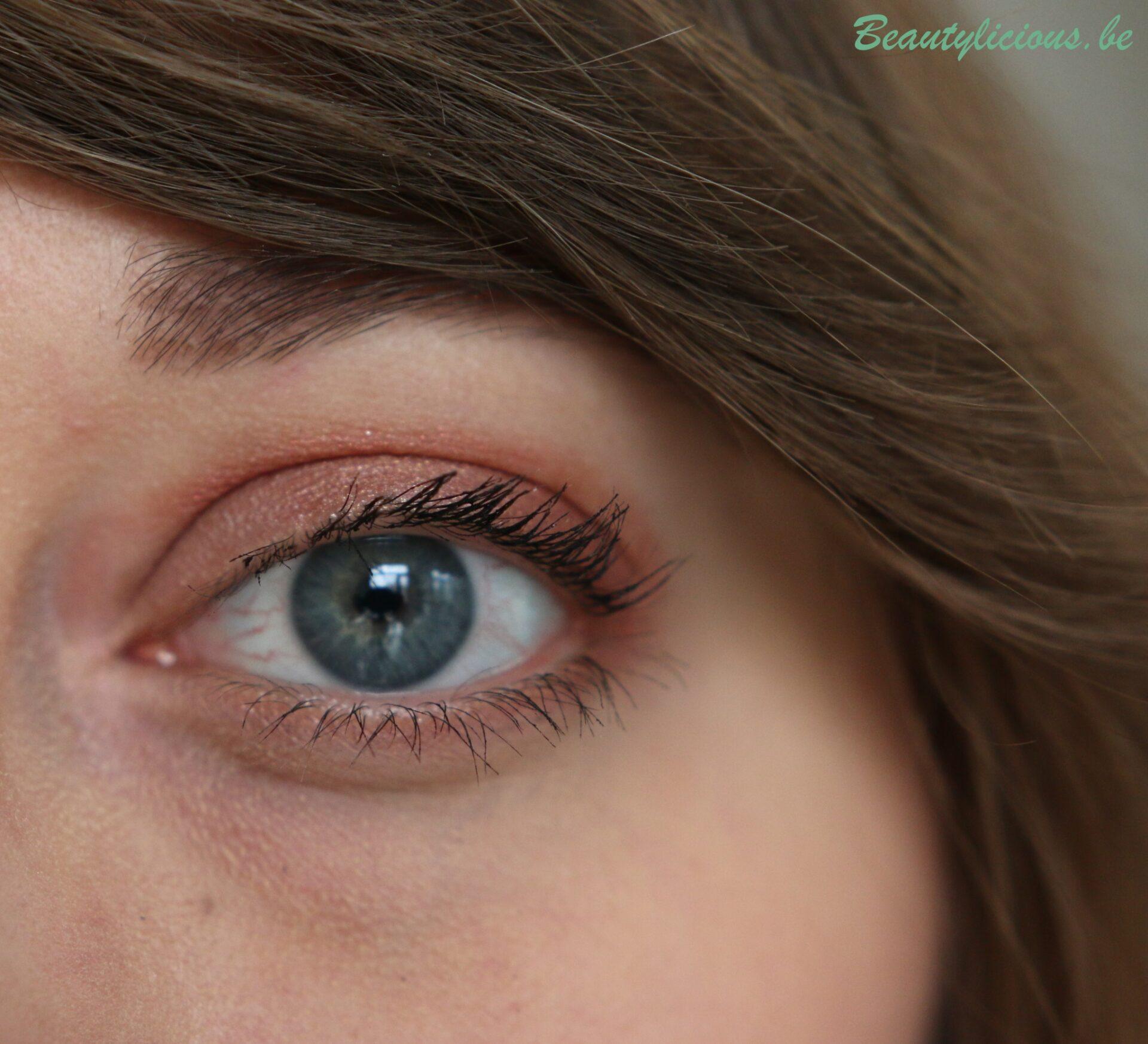 palette de pinceaux maquillage